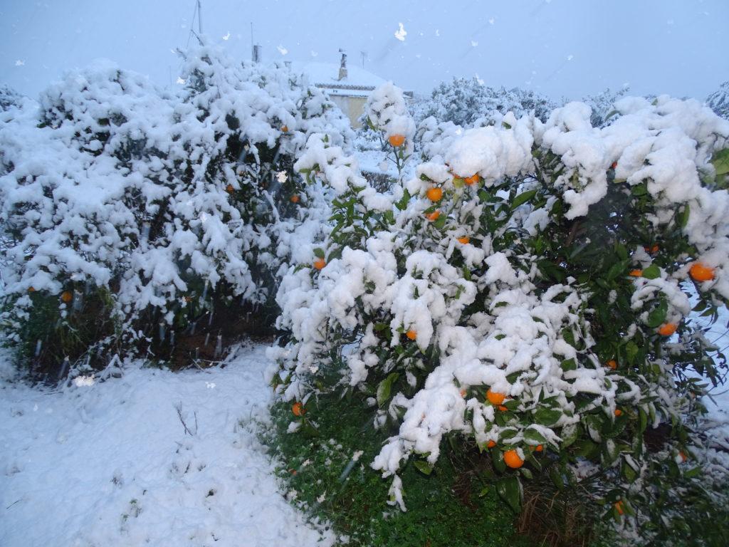Schnee an der Costa Blanca